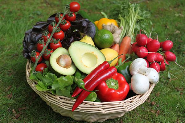 Gemüsekorb CLASSIC